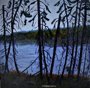 Réjean Lacroix artiste, Ramures, Peck Lake, Parc Algonquin, Ontario.