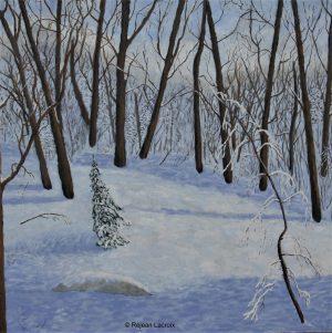Réjean Lacroix, Soleil caresse neige